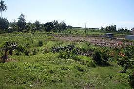 WANTED Long term Rent 20 acres in Fiji or PNG/Islands/N.Z. Port Macquarie City Preview