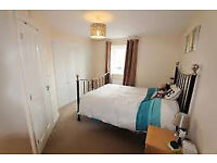 3/4 bedroom house to let in Charlton Hayes BS34