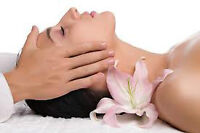 DIVINE TOUCH SKIN CARE & SPA (Home Business in Evanston NW)