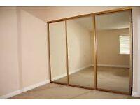 Sliding Mirror Doors & Rail