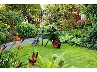 Assistant Gardener Required