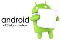 I program android box  20 dollars