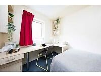 student accommodation, Leicester in castle court, room available