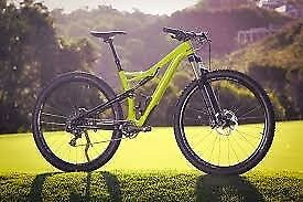 specialized camber (2017) large 29er