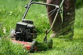 Lawn cutting call me now 647-712-5231