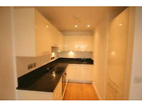 Stunning Spacious 1 Bedroom Executive Apartment - no agency fees