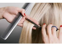 Business for sale/hire. Mobile Hairdresser website ranked number 1 in Cardiff
