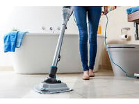 Domestic Cleaner required in Burpham, Guildford