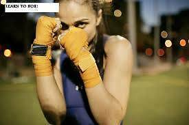 BOXING LADIES MENS FITNESS BOOTCAMP/PERSONAL TRAINING Bankstown Bankstown Area Preview