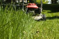COUPE DE GAZON PH GRASS  CUTTING 514-995-1911 PIERREFONDS