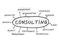 **Business Consultant **