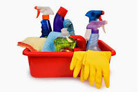 Pretty Little House Cleaning Services 905-732-8082