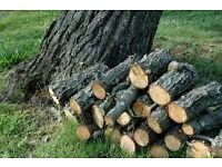 Fire wood. logs. Wanted fallen branches in the wind? happy to come and cut up/collect