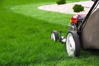 Wanted: looking for mature person to cut grass.