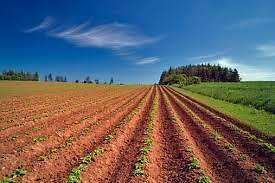 PEI's Best Farmland- Most Heat Units- For Sale!