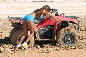 LOOKING FOR QUAD BIKE CASH PAID New Beith Logan Area Preview