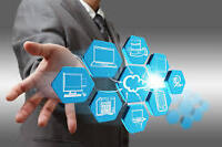 Highly-qualified IT Manager seeking LMIA/LMO Job Offer