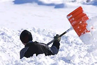 SNOW REMOVAL SERVICES ( residential only plz )