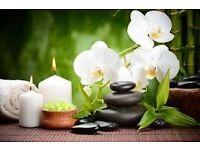 Thai Hot Oil Massage By Meena