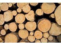 Logs for wood burner