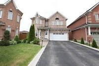 2-Br Basement Apartment- Very Spacious- Available immediately