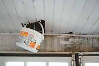 Spent The Weekend In Rain Gear? We Fix Leaky Roofs Fast!