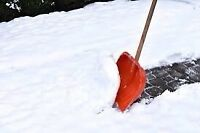 West End Snow removal  20-30 a visit or 299 for the season