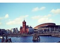 House / Flat share wanted in Cardiff Bay immediately.