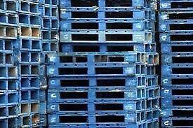 Blue euro pallets