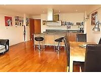 STUNNING ONE BEDROOM APARTMENT - NEWLY DECORATED - AVAILABLE NOW