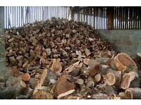 Barn Stored Firewood