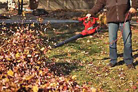 Fall yard cleanup special 40 a house front and back leaf removal