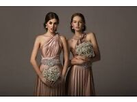 Beautiful 'Two Birds' Floor Length Dresses - 1 x brand new and 3 x worn once Rosewater and Slate