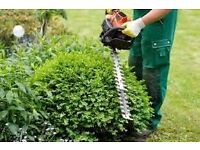 Gardener/general handyman - removal services.