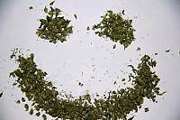 How do I use Medical Cannabis?