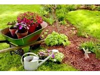 LOCAL GARDENER , LANDSCAPER AVAILABLE IN YOUR AREA .CALL TODAY AT 0786_9488_720