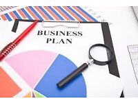 I write Tier 1 Business Plan for VISA, Work Wanted!