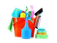Experienced crb checked female cleaner