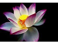 Reiki Healing with Qualified Reiki Master