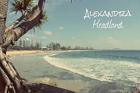 Lindsay St Student or Working person Share 80mtrs to beach . Alexandra Headland Maroochydore Area Preview