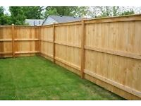 Fencing/fence repair, garden tidy up, decking, hedge cutting in Bristol