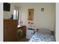 Beautiful single room in Herne Hill