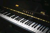 Piano lessons in a comfort of your home!