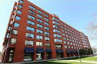 Completely Renovated Downtown Condo
