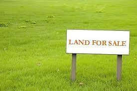 Raw land for Dream Home