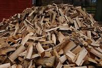 Mobile Firewood Processing