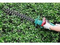 Gardening Services - Hedges, Lawns and Gardening Work Undertaken In Derby