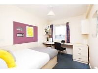 Ensuite Double Bed Room 30 Seconds from the University