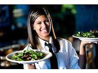 Friendly, Polite, Respectful & Professional Waitress