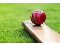 Cricket players required in Glasgow